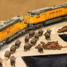 FAB-Railway_20150517_053